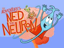 Ned the Neuron
